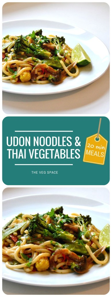 Udon Noodles & Thai Vegetables | The Veg Space