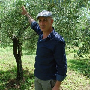 Pomora - Adopt an Olive Tree - Antonio