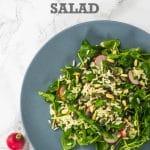 Wild Rice & Watercress Salad