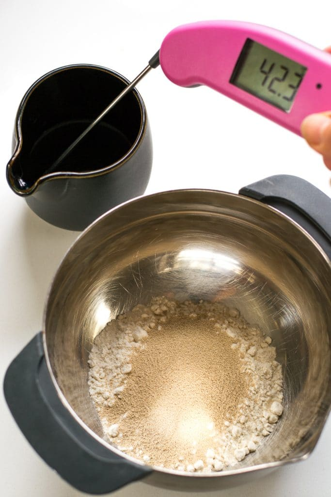 thermapen thermometer yeast