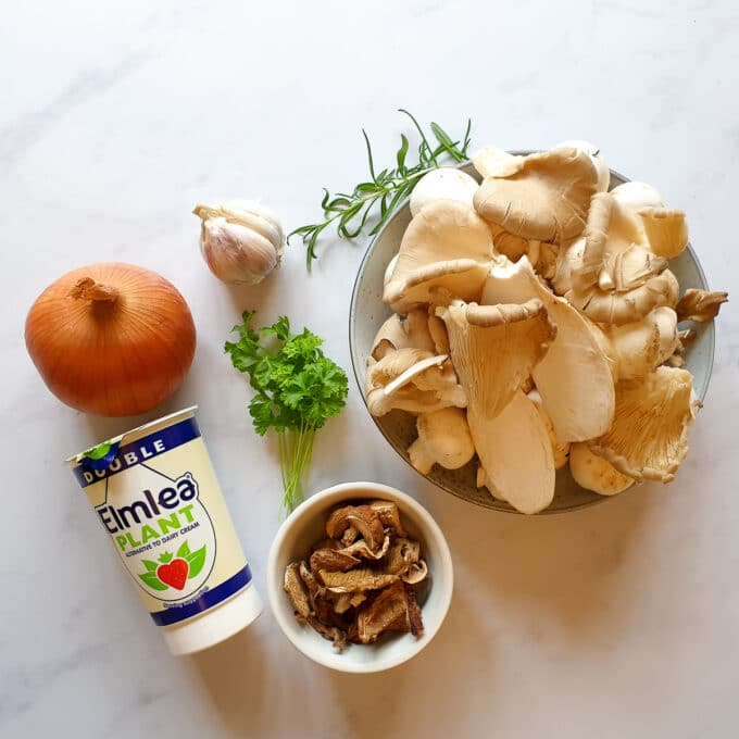 Porcini Soup - vegan ingredients